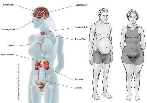 foodsthatcausehormonalimbalance-1450900089kg84n